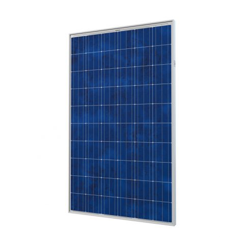 Panel Solar CANADIAN SOLAR CS6P-250M